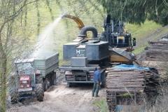 Forstwirtschaft (3)