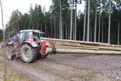 Forstwirtschaft (4)
